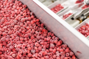 The PyroUSB measures as low as -40°C, so it can measure the temperature of frozen foods.